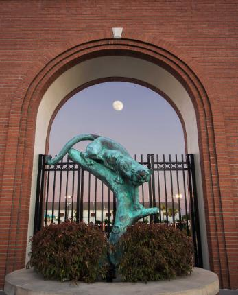 Panther statue in front of the aquatic center, at dusk.