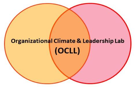 Organizational Climate and Leadership